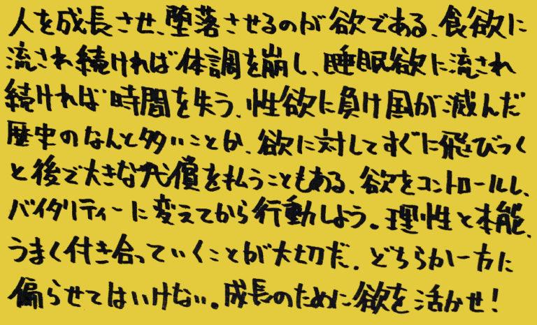 統合失調症-薬-その3_独り言-05