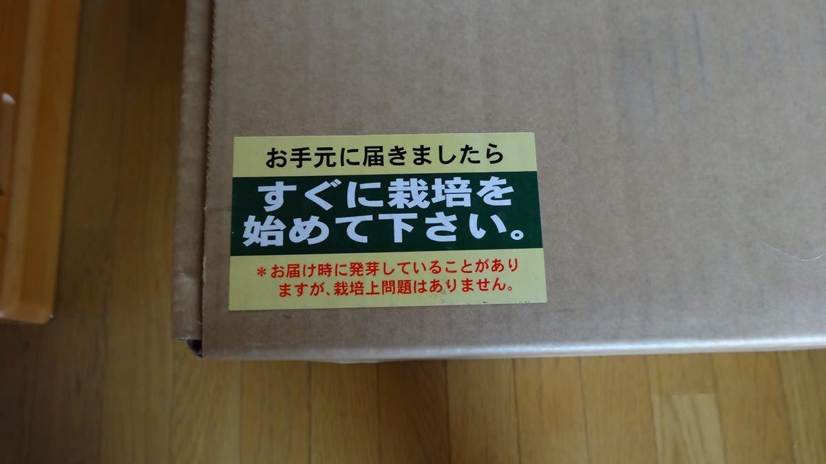 シイタケ栽培キット-01